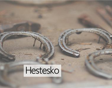 Hestesko