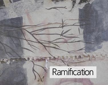Ramification