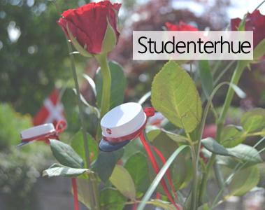 Studenterhue